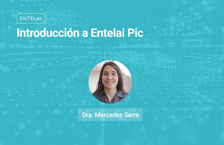 Introducción a Entelai Pic